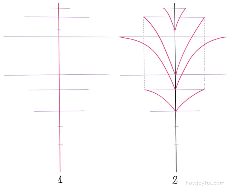 how to draw a bur oak leaf