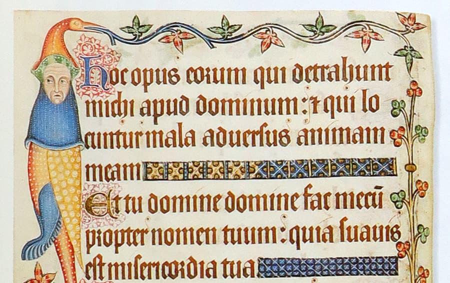 textura prescisus example