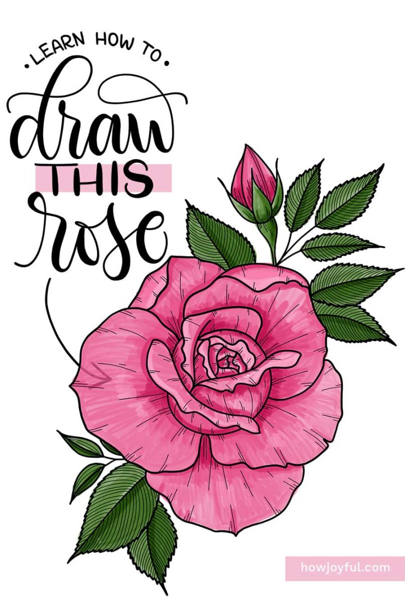 draw this realistic rose